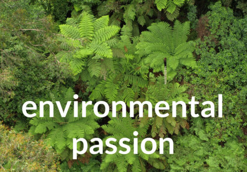 writing with environmental passion