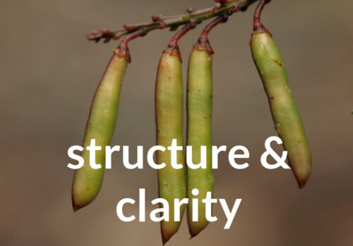 writing with structure and clarity